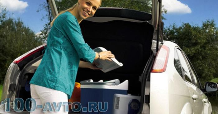 Сумка-холодильник для автомобиля