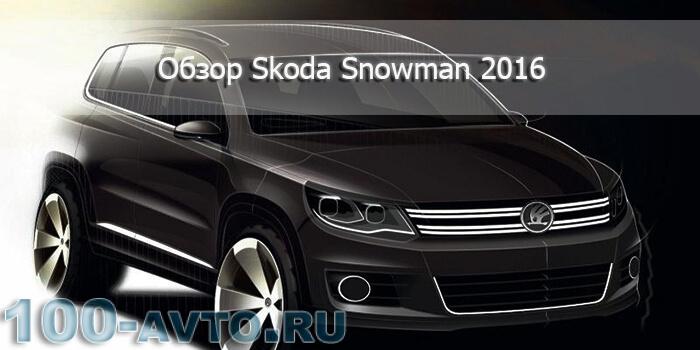 Skoda Snowman 2016